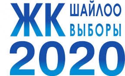 Шайлоо-2020: Чет  өлкөдөгү шайлоочулардын саны 20 миңге жетти