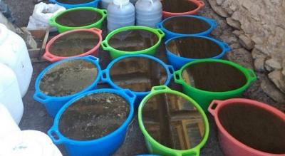 ИИМ: 541 килограммдан ашык баңгизат табылды