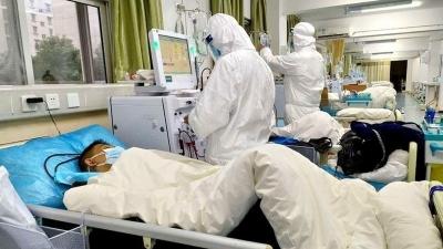 Акыркы сутка ичинде 258 бейтап коронавирус инфекциясын жеңип чыкты